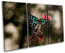Butterfly Flowers Animals - 13-1165(00B)-TR32-LO
